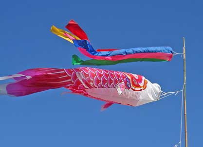 Koi windsocks japan pictures to pin on pinterest pinsdaddy for Japanese koi windsock